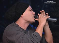 24 Decembrie 2011 » Puya