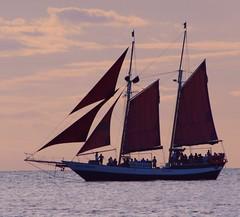 Arrrgh! Hoist the Sails! (PelicanPete) Tags: ocean sunset sailboat unitedstates florida sails atlantic keywest charter southflorida pirateship sailships fullsails catchingthewind abeautifulthing islandchain jollyrover keywestharbor