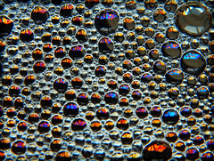 Irridescence (LostMyHeadache: Absolutely Free *) Tags: light macro water beauty reflections soap nikon floating bubbles spots oil dots irridescent davidsmith calgaryalbertacanada macromondays