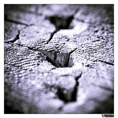 3 points (oZopanda - David Cívico) Tags: macro canon textures 60mm texturas abtract 550d abtracto mygearandme mygearandmepremium flickrstruereflection1