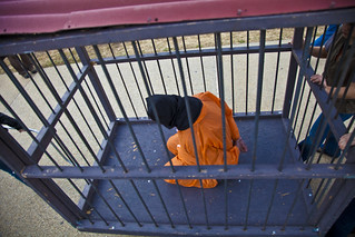 Witness Against Torture: Caged Detainee
