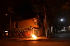 San Francisco 033 (Michael Kappel) Tags: sanfrancisco california ca fire graffiti san francisco flames arson firing pyromania treeonfire sanfranciscograffiti burningtree torching incendiarism settingfire burningchristmastree christmastreeonfire