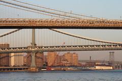 Brooklyn Bridge(s) (joseph a) Tags: newyorkcity bridge newyork manhattan lowereastside brooklynbridge manhattanbridge suspensionbridge lowermanhattan williamsburgbridge roebling nationalhistoriclandmark nationalregister emilywarrenroebling johnaroebling washingtonroebling