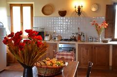 Image00036 (meaghanbarr) Tags: santa kitchen maria rental val villa pienza podere dorcia