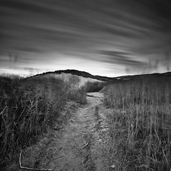 Footpath [EXPLORED] (Martin Mattocks (mjm383)) Tags: longexposure sky blackandwhite monochrome grass movement sand cornwall mood dunes atmosphere explore footpath holywellbay leefilters cornwalllandscapes mjm383 martinmattocksphotography