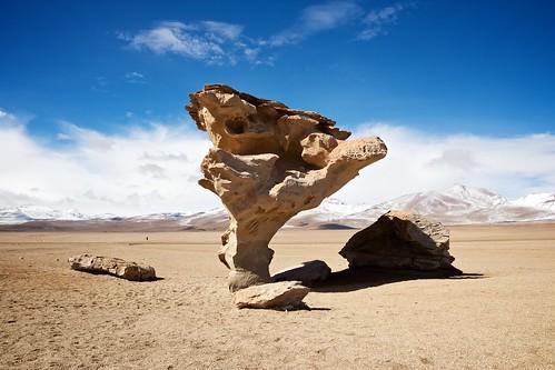 Árbol de Piedra  (4.575 m)