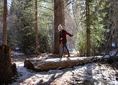 tres. (bellejune) Tags: trees shadow 3 snow cold hat leaves forest log boots branches jeans evergreen flannel 52weeks belowfreezing cincuentaydos bellejune cincuentados