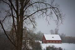 Grieve Not (Loren Zemlicka) Tags: winter red portrait sky usa snow cold tree nature wisconsin barn rural landscape outdoors photography countryside photo december farm branches country picture american northamerica 2010 horsefarm horsebarn iowacounty dodgeville canoneos5d pleasantridge canonef100400mmf4556lisusm portalwisconsinorgselected lorenzemlicka portalwisconsinorg011912