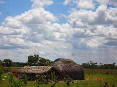 Vivir lejos del hombre (Karen Stephanie) Tags: sky field day country hovel hut cielo campo shack da choza