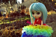 Hyphignia ~ Day 3 (Nickocha) Tags: france rainbow dress wig pullip prunella leeke obitsu rewigged nickocha hyphignia