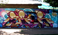 Zade1 (COLOR IMPOSIBLE CREW) Tags: chile color del graffiti 1 mar via crew painters norte zade imposible fros