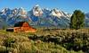 Blue Skies in Jackson Hole (Jeff Clow) Tags: bravo grandtetonnationalpark mormonrow antelopeflats jacksonholewyoming johnmoultonbarn