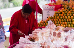 "Tlacoyo lady<br /><span style=""font-size:0.8em;"">Read more about it here:<br /><a href=""http://whatscookingmexico.com/2012/01/30/market-monday-sullivan-tianguis-a-photoset/"" rel=""nofollow"">whatscookingmexico.com/2012/01/30/market-monday-sullivan-...</a></span> • <a style=""font-size:0.8em;"" href=""http://www.flickr.com/photos/7515640@N06/6789292427/"" target=""_blank"">View on Flickr</a>"