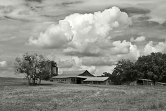 Red Hill, NC Farm (hutchphotography2020) Tags: blackandwhite field clouds barn rural nc nikon farm monochromatic pasture weathered nikonflickraward