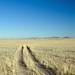 Namibia - Road to Luderitz