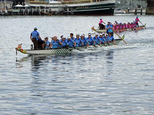 chinese sydney australia newyear darlingharbour lunar dragonboats dragonboatraces dragonboatracing