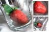 36-366 (Amalid) Tags: red white macro glass fruits closeup fruit canon project fire eos strawberry bokeh strawberries libya tripoli lighttent lightbox 2012 encarnado أبيض طرابلس ليبيا أحمر زجاج فراولة فاكهة فواكه canoneos450d 366project canoneosdigitalrebelxsi efs1855mmisf3556 365daytodayproject