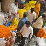 "Howrah Flower Market <a style=""margin-left:10px; font-size:0.8em;"" href=""http://www.flickr.com/photos/14315427@N00/6829263241/"" target=""_blank"">@flickr</a>"