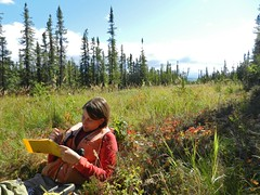 Note Taking (Travis S.) Tags: alaska notes relaxing flats trail lounging reclining southeast spruce aubrey notetaking tussocks mintoflats dunbarlivengoodtrail