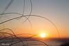 tocando el sol (mariloli olivo) Tags: fotoencuentrosdelsureste
