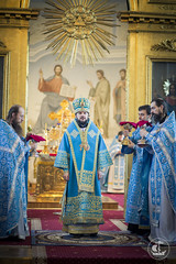 7 апреля 2014, Благовещение Пресвятой Богородицы / 7 April 2014, Annunciation of Our Lady (spbda) Tags: portrait church prayer pray christian academy seminary orthodox bishop liturgy spbda