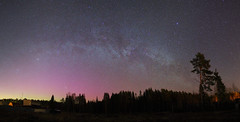 Easter's day night ) (Mike Reva) Tags: wood sky panorama night way easter stars lights spring russia pines aurora pan 24mm milky starry borealis nothern mark2 astrometrydotnet:status=failed canon5d2 samyang24mm astrometrydotnet:id=nova273248