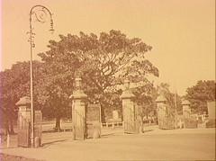 Sydney Domain Gates c.1920 (Royal Australian Historical Society) Tags: nature garden sydney australian royal australia nsw historical botanic garden rahs royal society century 20th