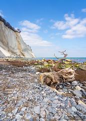 Pebble beach (johanbe) Tags: blue sea sky mountain seascape tree beach berg strand landscape denmark nikon cloudy pebbles cliffs tokina pebblebeach danmark trd hav landskap stenstrand moln smsten klippor mn mnsklint d7200
