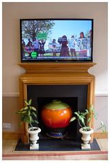 Coffee & TV (mkel) Tags: city england urban plant news london television hotel tv interior decoration screen vase marylebone