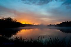 GA-Sunrise-2 (Scottmidb) Tags: morning trees lake reflection nature beautiful fog sunrise nikon greatadventure d3 prospertownlake