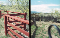 Disconnect (monica.35mm) Tags: film pen olympus analogue halfframe colorfilm