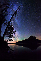 "Stars over Jenny Lake, Grand Tetons (IronRodArt - Royce Bair (""Star Shooter"")) Tags: park sky lake reflection tree nature silhouette night dark way stars dead evening twilight shiny long exposure heaven glow shine nightscape time dusk infinity space jenny deep grand twinkle astro sparkle galaxy national astrophotography planet astronomy teton universe exploration milky cosmic starry cosmos astrology constellation distant milkyway starlight starrynightsky"