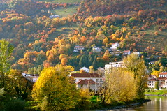 Un bel automne  Grenoble (Michele*mp) Tags: autumn trees france colors grenoble automne river europe couleurs rivire foliage arbres isre rhnealpes labastille dauphin feuillages michelemp