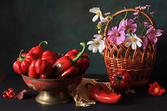 Red Like Spice (panga_ua) Tags: flowers red summer stilllife art composition canon pepper basket artistic lace availablelight napkin spice joy august ukraine ring heat setup plenty arrangement asteraceae cosmos capsicum tabletop bellpepper bodegon decorated naturemorte artisticphotography naturamorta sweetpepper artphotography rowanberries sharpfocus capitulum nataliepanga metallicfootedbowl redlikespice broadrayflorets centerofdiscflorets