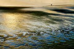 Tidal Prints (floralgal) Tags: sunset seascape beach duck dusk lowtide puddles ryenewyork westchestercountynewyork