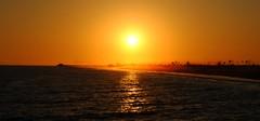 (Karina Rose Hernandez) Tags: ocean california ca trees light sunset red sea sky orange sun tree beach water pier sand waves skies dusk palm newport