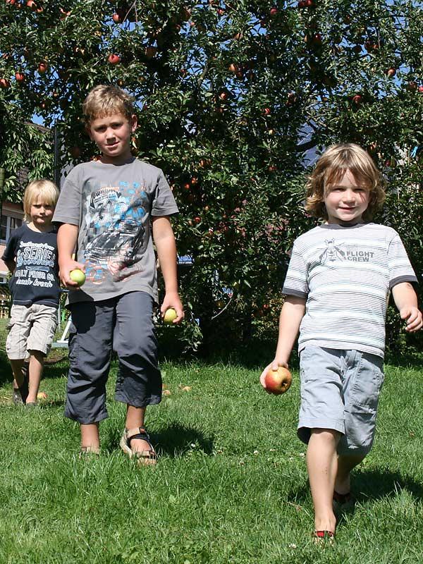 Lindenhof Hausmann - Kinder pflücken Äpfel