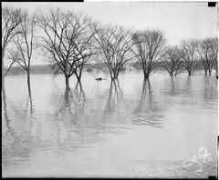 Flooding (Boston Public Library) Tags: weather storms floods lesliejones