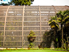balboa (rs.becky) Tags: sandiego greenhouse balboapark steelarchitecture