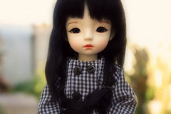 She is here! (Arisuyuki) Tags: doll bjd dollmore yosd babylambmiadoll miasbabydollaga daitsumi