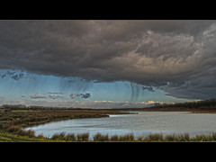Downpour (Loe Giesen) Tags: showers downpour reuver meerlebroek