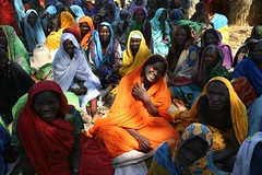 UNHCR News Story: Survivors, Protectors (UNHCR) Tags: africa news women chad crowd information unhcr displacement newsstory fooddistribution idps koukou internallydisplacedpeople forceddisplacement internallydisplaced unrefugeeagency highcommissionerforrefugees