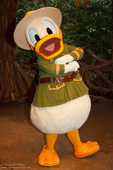 WDW Oct 2011 - Meeting Donald Duck