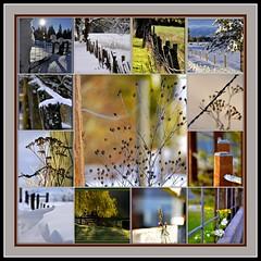 Fence Mosaic (misst.shs) Tags: nikon mosaic fences montage dover sandpoint northidaho colburn