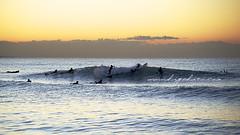 12.17'11 chigasaki surfin morning surfin (higehiro) Tags: morning beach japan  shonan   chigasaki