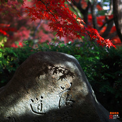 Cast (fravenang) Tags: autumn fall japan temple kyoto       jojakkoji