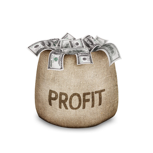 Profit: English Picture Dictionary Imagict