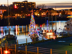 Christmas in the harbor