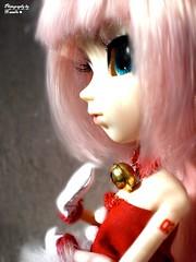 My X-Mas List. (N'aωelle♥) Tags: christmas amy noel list wig pullip luka liste clochette vocaloid megurine