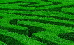 LONGLEAT MAZE SHAPES IN GREEN (*LINNY *) Tags: green art shapes maze shape